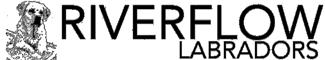 Riverflow Labradors Logo